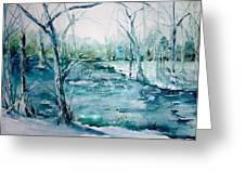 Arkansas Winter Greeting Card by Robin Miller-Bookhout