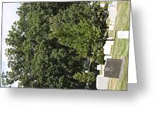 Arlington National Cemetery - 121238 Greeting Card by DC Photographer