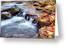 Art for Crohn's HDR Fall Creek Greeting Card by Tim Buisman