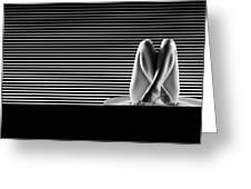 Artistic B W Nude Greeting Card by Dan Comaniciu