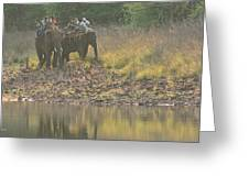 As Close As It Gets Greeting Card by Fotosas Photography