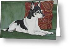 Ashley On Her Sofa Greeting Card by Sandra Chase
