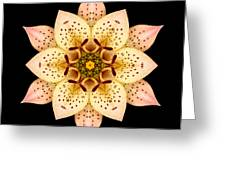 Asiatic Lily Flower Mandala Greeting Card by David J Bookbinder
