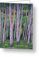 Aspen Enclave Greeting Card by Johnathan Harris