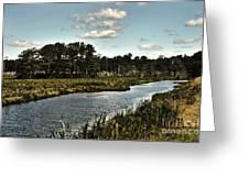 Assateague Island - A Nature Preserve Greeting Card by Gerlinde Keating - Galleria GK Keating Associates Inc
