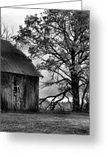 At The Barn In Bw Greeting Card by Julie Dant