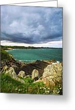 Atlantic Coastline In Brittany Greeting Card by Elena Elisseeva