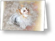 Attentive Greeting Card by Mary Timman