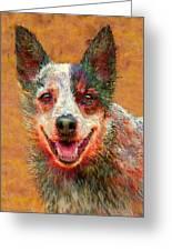 Australian Cattle Dog Greeting Card by Jane Schnetlage