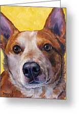 Australian Cattle Dog Red Heeler On Yellow Greeting Card by Dottie Dracos