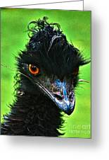 Australian Emu Greeting Card by Blair Stuart