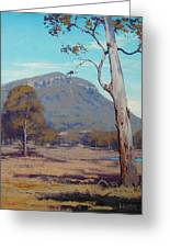 Australian Summer Landscape Greeting Card by Graham Gercken