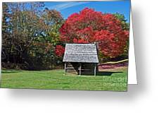 Autum For A Mountain Home Greeting Card by Skip Willits