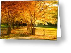 Autumn Alley Greeting Card by Alexey Stiop