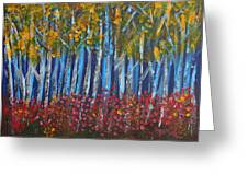 Autumn Aspens Greeting Card by Donna Blackhall
