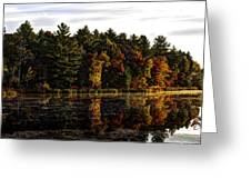 Autumn At It's Finest 2 Greeting Card by Thomas Young