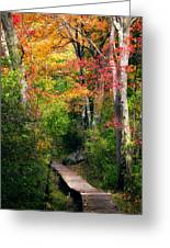 Autumn Boardwalk Greeting Card by Bill Wakeley