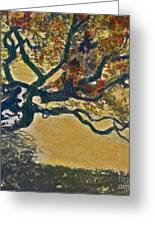 Autumn Bonsai Tree - Lithograph Greeting Card by Deborah Talbot - Kostisin