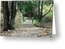 Autumn Bridge Greeting Card by Jenny DiNuoscio