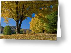 Autumn Colors Greeting Card by Brian Jannsen