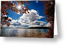 Autumn  Confidential  Greeting Card by Bob Orsillo