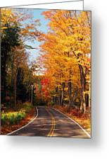 Autumn Country Road Greeting Card by Joann Vitali