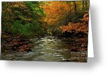 Autumn Creek Greeting Card by Melissa Petrey
