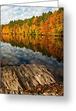 Autumn Day Greeting Card by Karol Livote