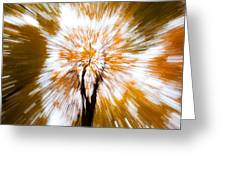 Autumn Explosion Greeting Card by Dave Bowman