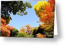 Autumn Forest Colors Greeting Card by Boon Mee