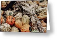 Autumn Gourds 2 Greeting Card by Joann Vitali