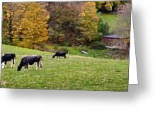 Autumn Graze Greeting Card by Bill  Wakeley
