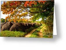 Autumn Hay Bales Blue Ridge Mountains II Greeting Card by Dan Carmichael