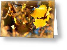 Autumn Hearts Greeting Card by Lisa Holland-Gillem