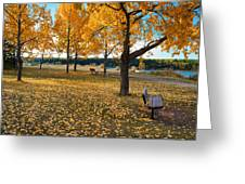Autumn In Calgary Greeting Card by Trever Miller