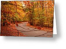 Autumn In Holmdel Park Greeting Card by Angie Tirado