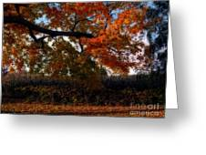 Autumn in the Country Greeting Card by Inspired Nature Photography By Shelley Myke