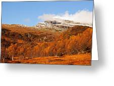 Autumn In The Mountains Greeting Card by Gry Thunes