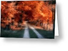 Autumn Lane Greeting Card by Tom Mc Nemar