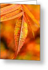 Autumn Leaves Greeting Card by Gynt