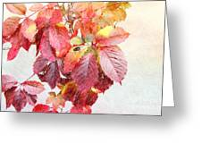 Autumn Leaves Greeting Card by Liane Wright