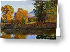 Autumn Light Greeting Card by Beverly Theriault