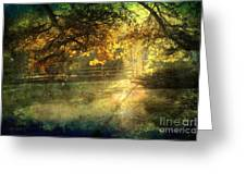 Autumn Light Greeting Card by Ellen Cotton