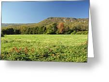 Autumn Massanutten Greeting Card by Lara Ellis