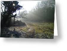 Autumn Morning 2 Greeting Card by David Stribbling