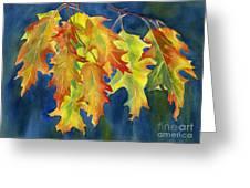Autumn Oak Leaves  on Dark Blue Background Greeting Card by Sharon Freeman