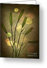 Autumn Party Greeting Card by Jan Bickerton