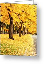 Autumn Perspective Greeting Card by Carol Groenen