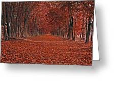 Autumn Greeting Card by Raymond Salani III
