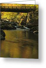 Autumn Reflections In Tennessee Greeting Card by Dan Sproul